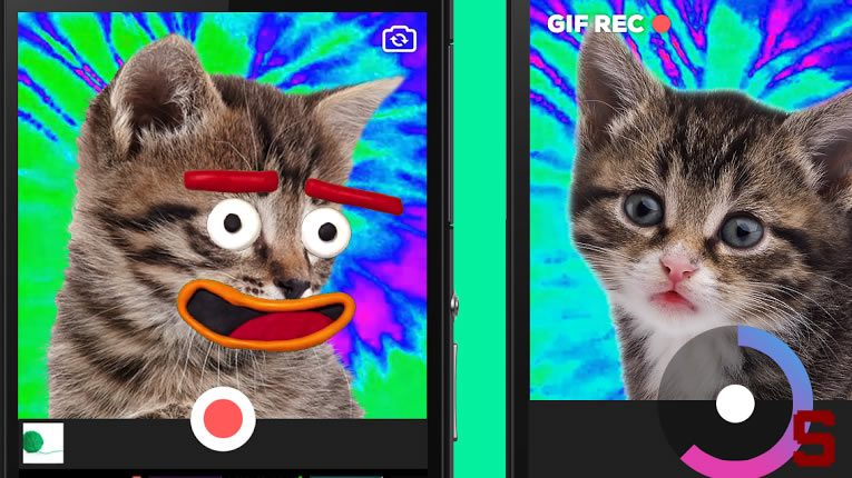 giphy-app